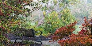 Views from the Garden - a garden photography workshop