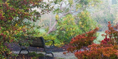 Views from the Garden - a garden photography workshop tickets