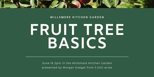 Fruit Tree Basics