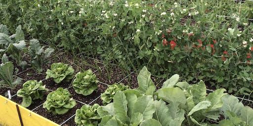 Gardening & Composting Class - June 2019
