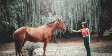 An Introduction of Equine Therapy for Mental Health Professionals - 3 CEU's tickets