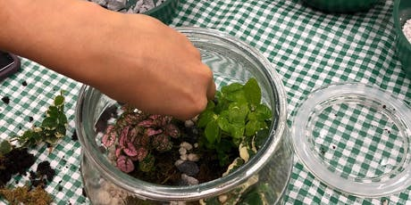 Evening Cocktail & Craft: Rainforest Terrariums tickets