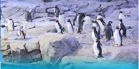 Detroit Dental Society Zoo Day tickets