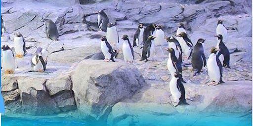 Detroit Dental Society Zoo Day