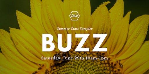 Buzz: Summer Class Sampler