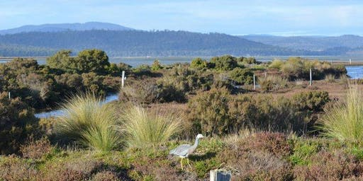 Institute of Australian Geographers (IAG) Conference: COASTS AND WETLANDS (MARION BAY) FIELD TRIP