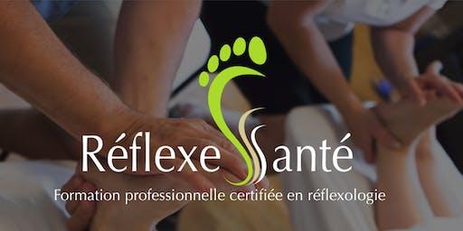 Cours de Réflexologie et les HE avec Réflexologue Louise Groulx
