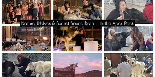 Immerse Yourself in Wolf Energy, Nature & Sound Healing