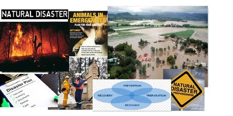 Disaster Preparedness Wollongbar Masterclass tickets