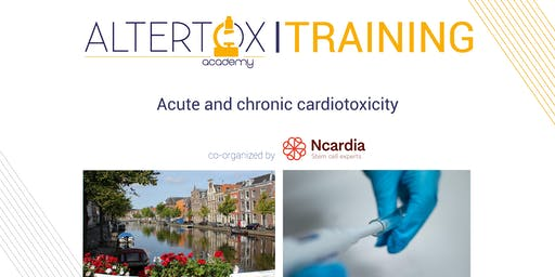 Acute and chronic cardiotoxicity