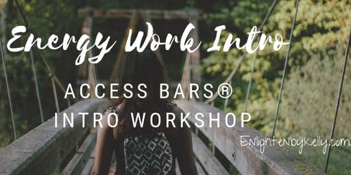 Energy Work Access Bars® Intro Workshop