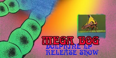 Mega Bog 'Dolphine' record release with Paint & Little Wings