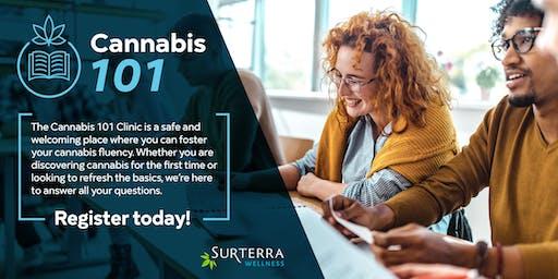 Cannabis 101 - St. Petersburg