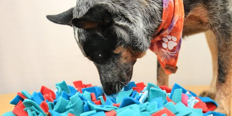 Crafty Paws, The Snuffle Mat tickets