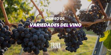 Curso de variedades del vino entradas