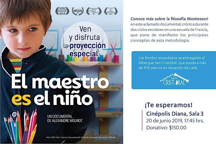 """Imagen de Documental """"El maestro es el niño"""""""