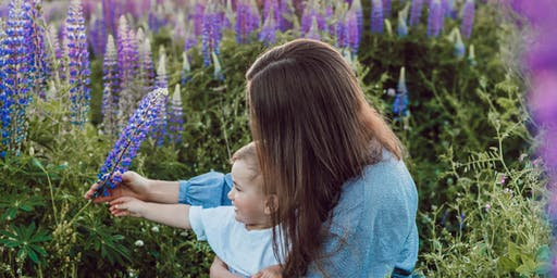 Happy Mums, Healthy Kids - using essential oils