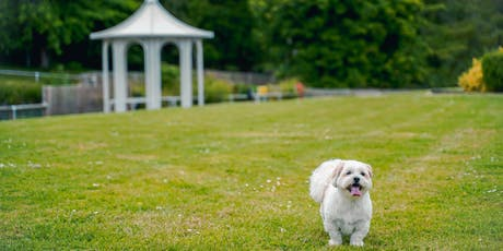 Prosecco and Pooch Garden Party tickets