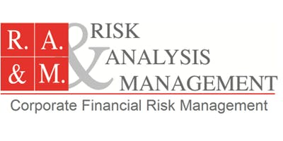 Mastering in Currency Risk Management