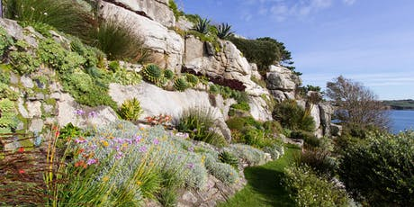 St Michael's Mount - Autumn Garden Tours tickets