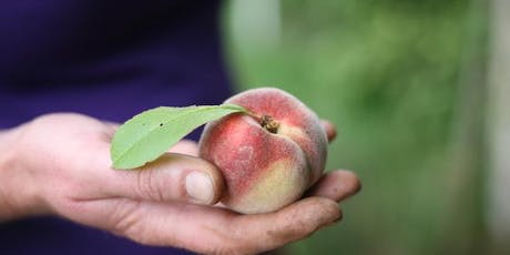 Fork to Fork Garden Tour & Lunch tickets