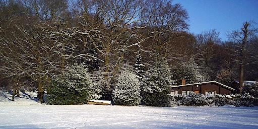 Highgate Wood in Winter