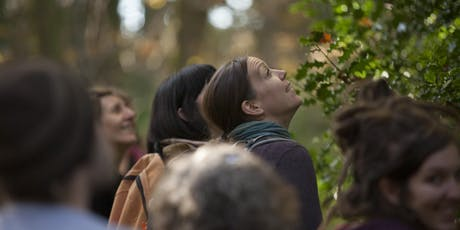 Tree Time - Textile stories and a walk among ancient trees tickets