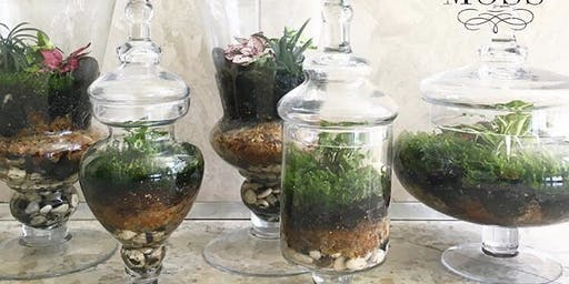 #007 Terrarium Workshop - Tom Price
