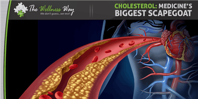 Wellness Way Approach to Cholesterol