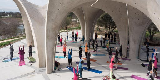 Introduction to Yoga: FREE Class @ Confluence Park