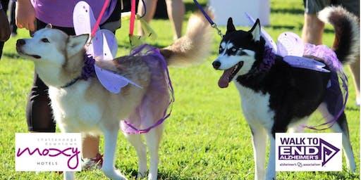 Dog Gone Purple to END Alzheimer's!