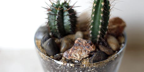 Cacti Building Workshop at Baltimore Spirits Co. tickets