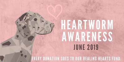 Healing Hearts & Heartworm Awareness