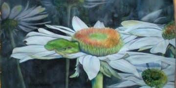 Colorful Coneflowers Watercolor Workshop