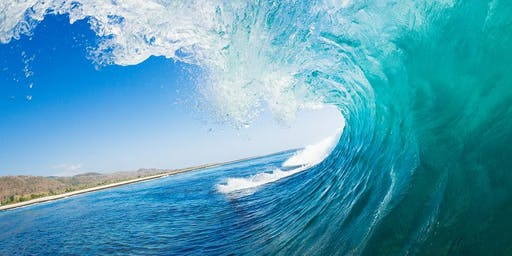 Beach Law