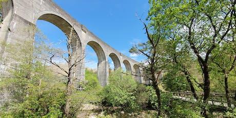 Harry Potter Bridge and Glencoe Walk (£26.50) tickets