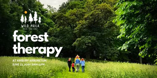 Nature Therapy Walk