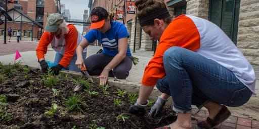 Volunteer at the Oriole Garden - June 28th