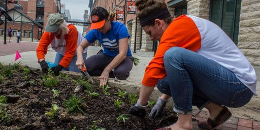 Volunteer at the Oriole Garden - July 12th