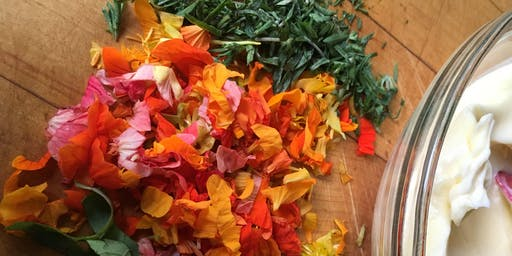 Capturing the Essence of Herbs