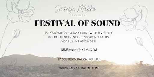 Salvaje Malibu: Festival of Sound