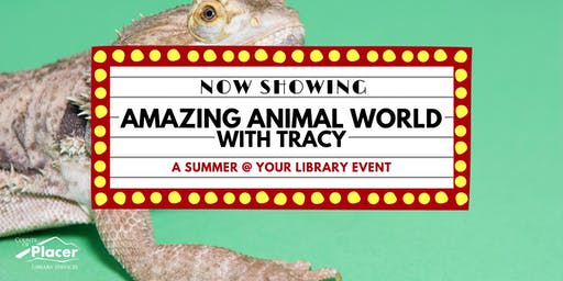 Amazing Animals with Tracy at Tahoe City Library