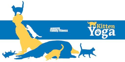 Kitten Yoga, Benefiting the SPCA (Pocket)