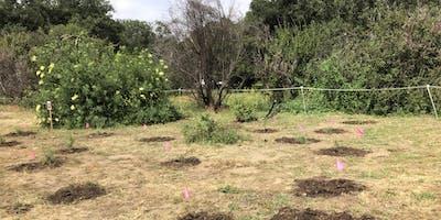 June 29th Irvine Regional Restoration with OCH