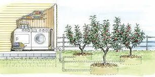 Resilient Neighborhood Day 5: Laundry-to-Landscape Greywater Installation