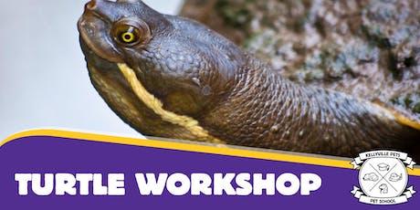 Turtle Workshops 2019 tickets