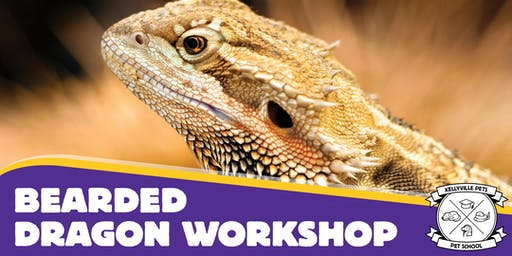 Bearded Dragon Workshops 2020