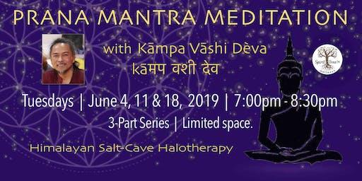 PRANA MANTRA MEDITATION in SALT-CAVE HALOTHERAPY