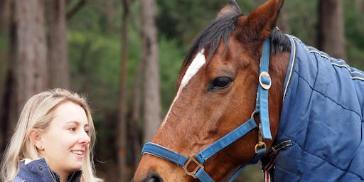 Open Day: Horse Safety and Care
