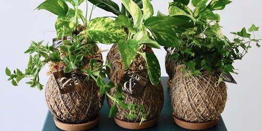 #005 Kokedama Workshop - Paraburdoo